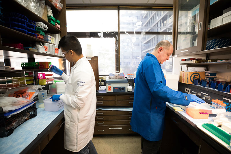 Sergio Diaz (left) and Anatol Sucher (right) handle research specimens in the lab at the UCSF School of Nursing.